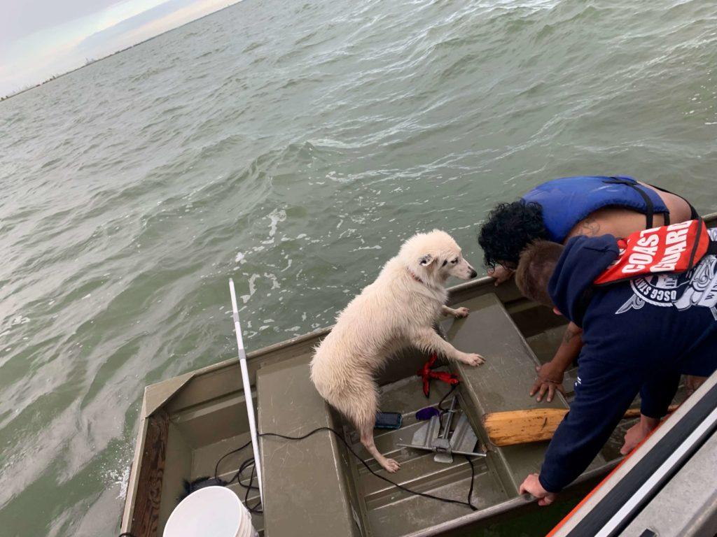 Coast Guard rescue overdue boater, dog near Texas City, Texas
